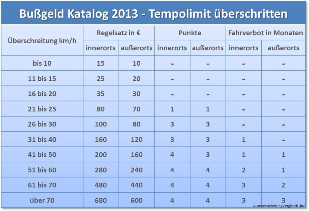 Bussgeld Katalog 2013